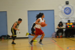 qsla basketball 2k toronto co-ed league